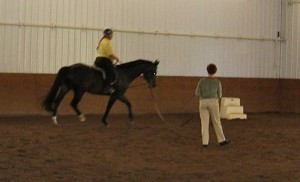 Improve Your Dressage Seat Weekend Workshop with Constance Clare-Newman